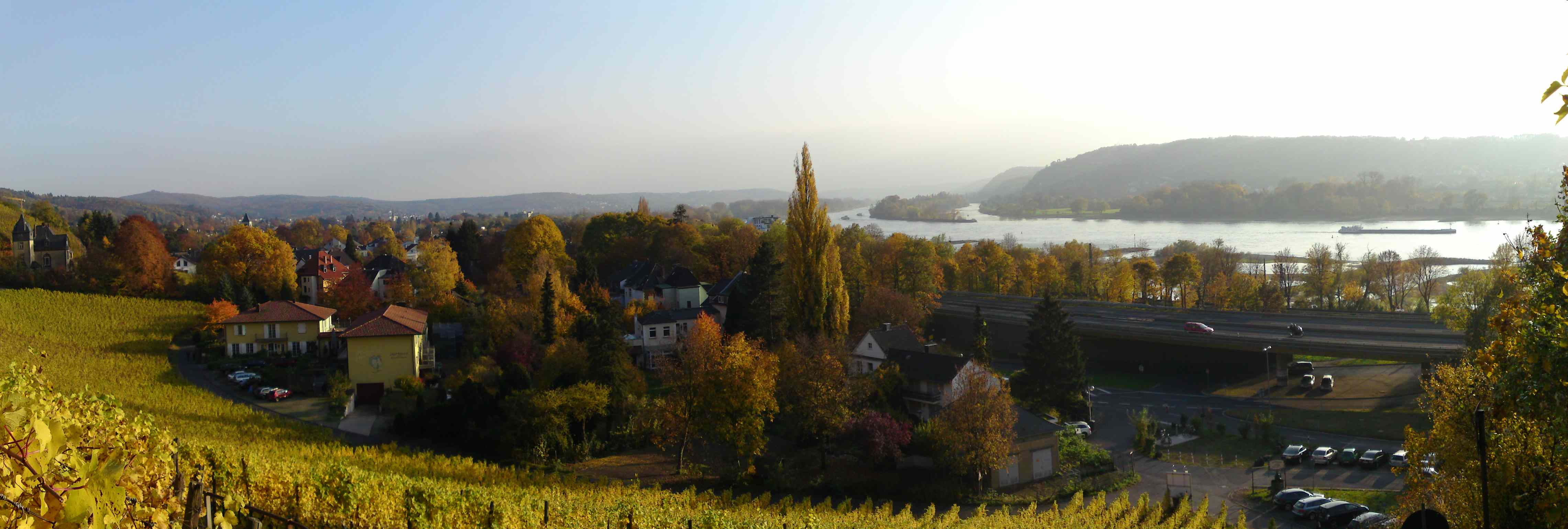 Panorama of rhine near Drachenfels