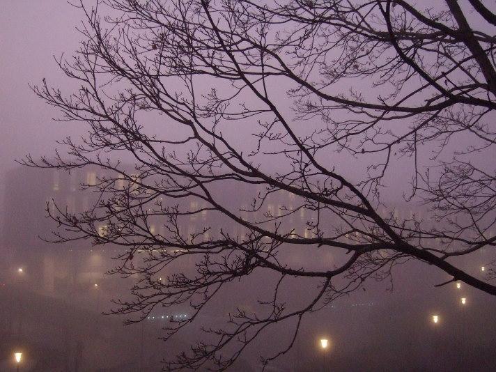 The Ole Johan Dahl building, University of Oslo, seen through the mist